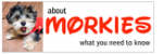 http://aboutmorkies.com/ Logo